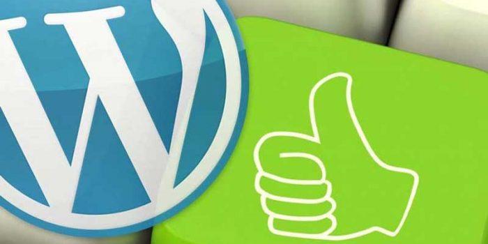 i recommend wordpress